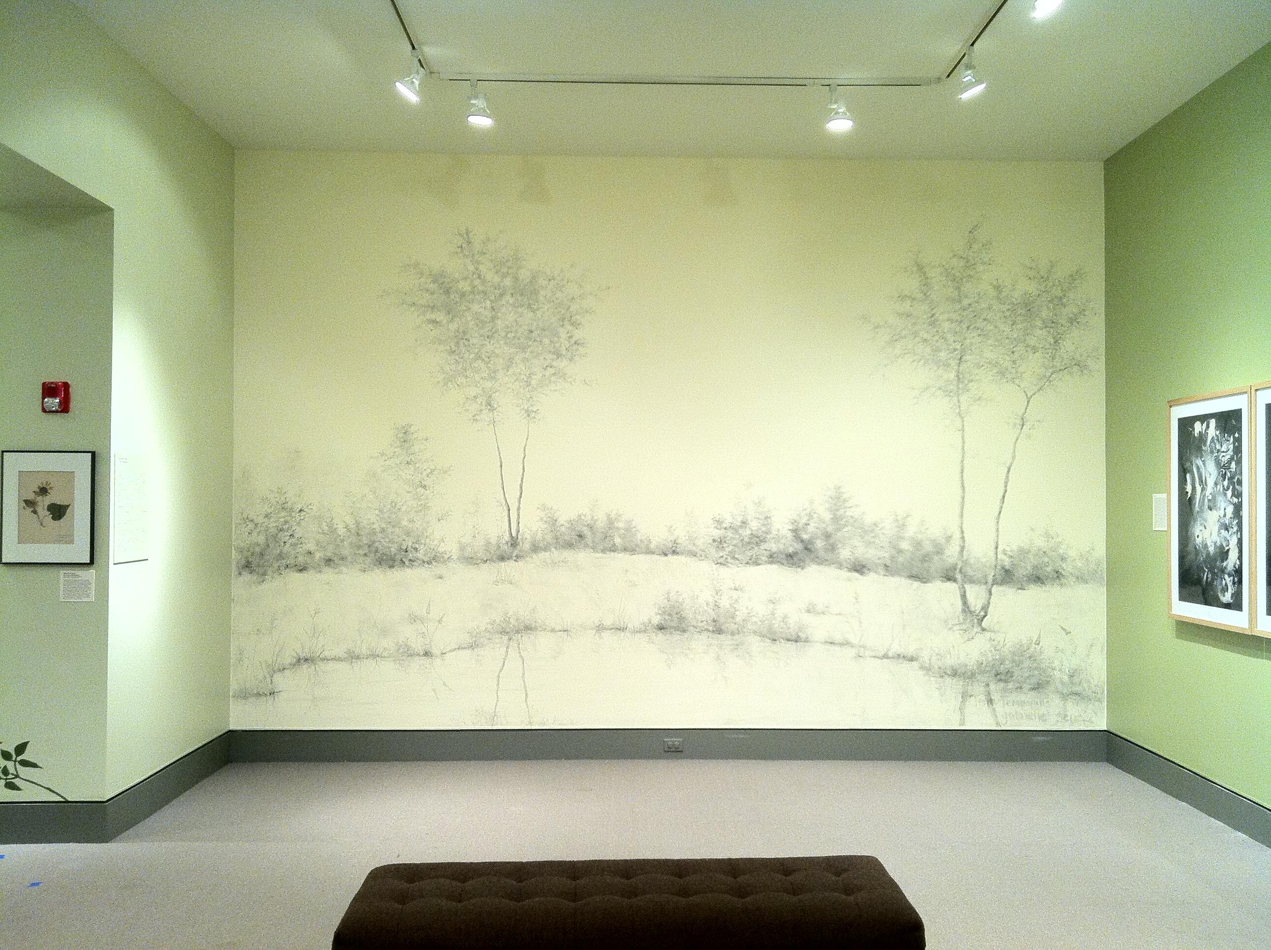 The First Terra Temporalis Wall Drawing | Terra Temporalis